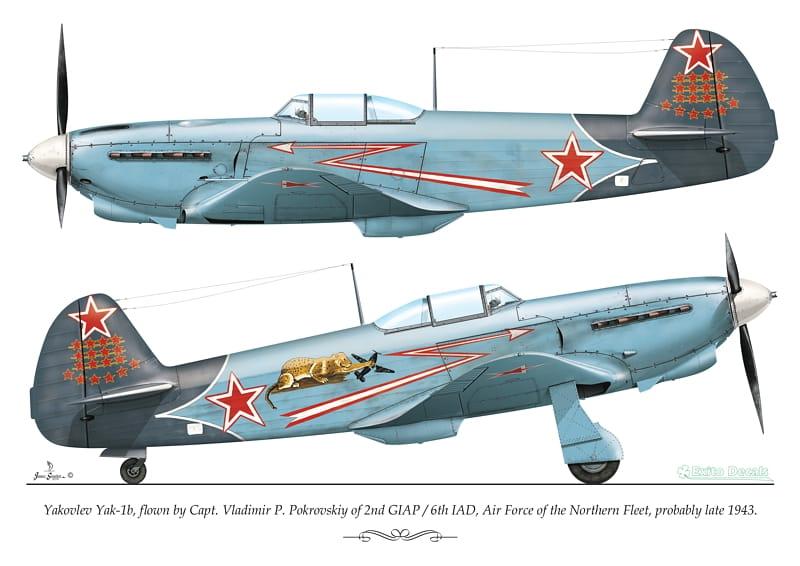 Yakovlev Yak-1 b  (Eduard L.E. réf 1126 au 1/48) de V.P. Pokrovskiy  ED48007-72007_p3